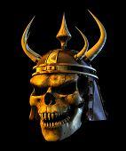 Cráneo de belicista del demonio