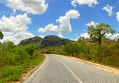 The Fantastic Nature Of Mozambique. The Road. Africa, Mozambique.