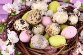 Composition with Easter eggs and blooming branches in nest, on wooden background
