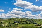 Green hills and vineyards under beautiful blue sky with white clouds in Piedmont, Northern, Italy.