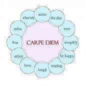 Carpe Diem Circular Word Concept