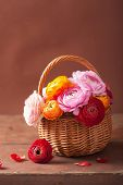 beautiful ranunculus flowers in basket