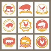 illustration of beef, pork,chicken