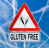 Gluten Free Traffic Sign