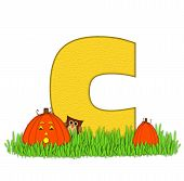 Alphabet Pumpkin Patch C
