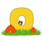 Alphabet Pumpkin Patch O