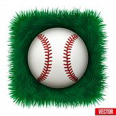 Icon Baseball ball in green grass. Vector Illustration
