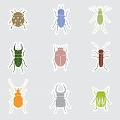 Color Bugs And Beetles Stickers Eps10