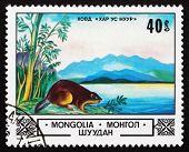 Postage Stamp Mongolia 1982 Beaver, Lake Hovd