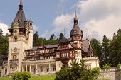 Peles Castle And Trees