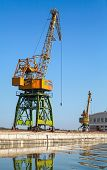 Big Industrial Harbor Cranes Works On The River Coast