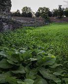 picture of ferrara  - The Walls of Ferrara  - JPG