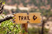 Brown Directional Sign For A Trail Pointing To The Right