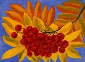 Ash Berries, Oil Painting