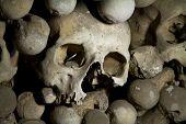 stock photo of eye-sockets  - old bones and skulls in the Gothic vault of Kutna Hora - JPG