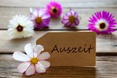 Label With German Text Auszeit Means Downtime With Cosmea Blossoms