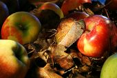 Colorful Apples And Leaves