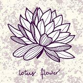 Stylish lotus flower on grunge background