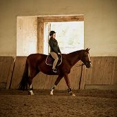 image of girth  - Young woman jockey doing training at indoor arena - JPG