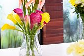 stock photo of calla  - Beautiful calla lily flower in jar for decoration - JPG
