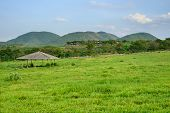 foto of great horse  - Horse Stable with green grass field in front of hills - JPG