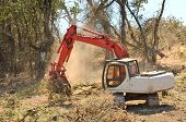 picture of track-hoe  - track hoe excavator clearing trees and brush from a hillside in preperation for a new commerical construction development - JPG