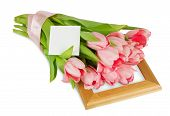 Pink Tulips With Satin Ribbon On The Wooden Frame With Postcard