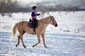 Little girl riding horse in rural environment in winter