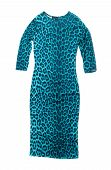 Blue Leopard Dress.
