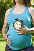 Blue Shirt Pregnant Countdown