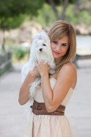 stock photo of maltese  - loving pet owner woman holding Maltese dog - JPG