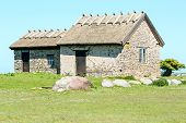 picture of grassland  - Limestone house with reed roof in old scandinavian style - JPG