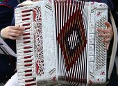 picture of accordion  - hand of a young woman plays the ancient accordion keyboard - JPG