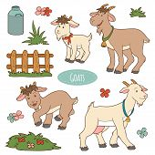 picture of cade  - Set of cute farm animals and objects vector family goats - JPG