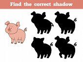 foto of pig  - Game for children - JPG