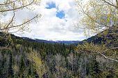 foto of blanket snow  - A snow blanket is still over San Juan mountains in Colorado - JPG