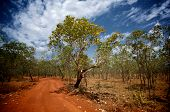 image of dirt road  - A red dirt road and blue sky in a typical bush scene in Kakadu National Park Northern Australia - JPG
