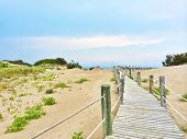 picture of costa blanca  - Spanish beach with white sand dunes - JPG
