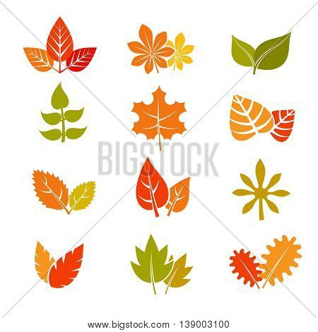poster of Multicolor autumn leaves flat vector icons. Fall feuille leaf collection. Set of autumn leaves, illustration maple leaf