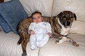 Mixed Race Baby Boy and his dog