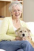 Senior Woman Holding Dog On Sofa