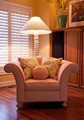 Comfy Designer Chair