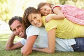 image of family fun  - Young Family Relaxing In Park - JPG