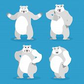 Постер, плакат: Polar Bear Set Of Different Poses Expression Of Emotions Wild Beast And Evil Good Sad And Happy A