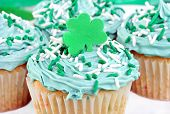 Cupcakes For St. Pat's Day