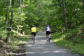 Bicycle Riders 1