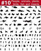 Set # 10. Gran colección de siluetas de vector de collage de personas, animales, aves, pescado, flores y