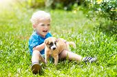 Kids Play With Puppy. Children And Dog In Garden. poster