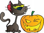Black Cat And Winking Halloween Jackolantern Pumpkin