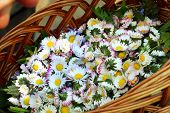 Flowers In A Basket. Basket With Flowers. Knitted Basket With Fresh Medicinal Flowers. The Plant Ori poster